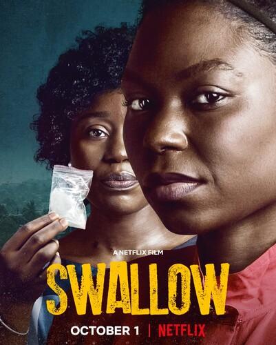 Swallow 2021 1080p NF WEB-DL DDP5 1 x264-CMRG